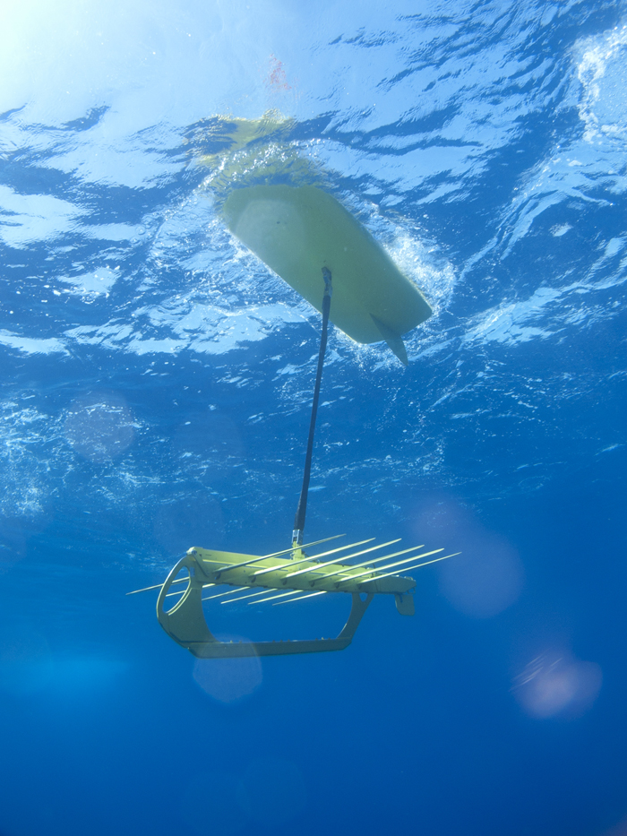 View of the Wave Glider below the ocean surface