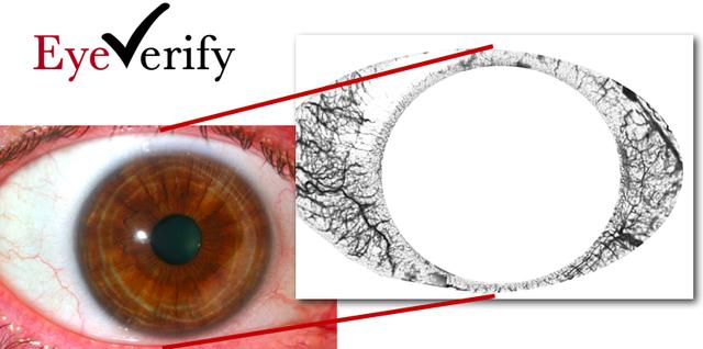 eyeverify eyeball