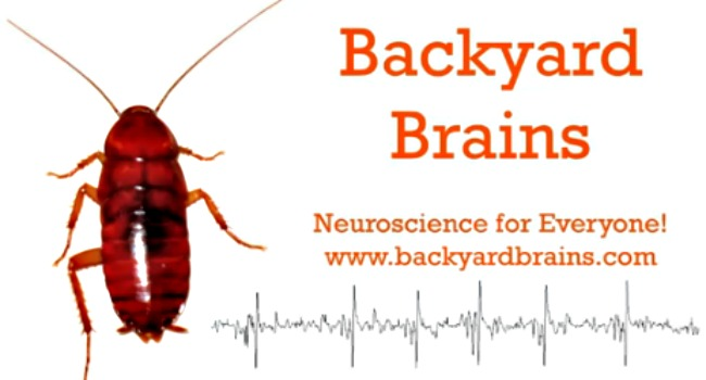 backyard brains